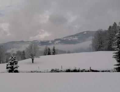 Winter GC St. Lorenzen